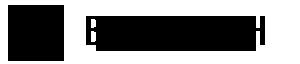 Big data Logo